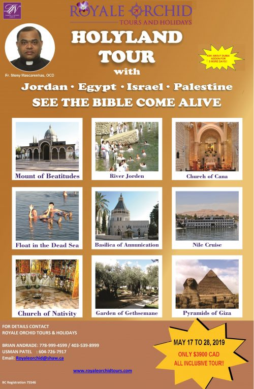 c394e03ae800e3 HOLYLAND WITH EGYPT   JORDAN - Royale Orchid Tours   Holidays